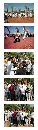 fotos taichi