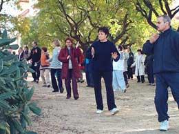 practica de taiji